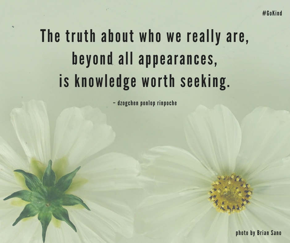 quote_the truth about who we really are, beyond appearances, is knowledge worth seeking.